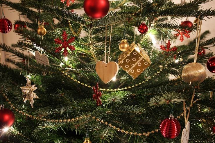 christmas-2994875_960_720.jpg